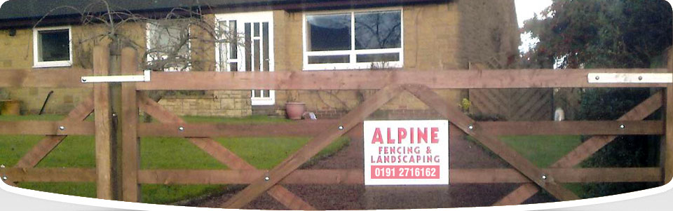 Alpine Fencing