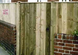 Board Fence and Gate