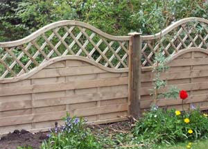 Curved Top Fencing